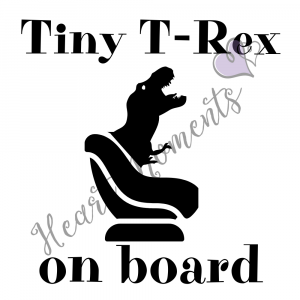 Child on Board Car Decals